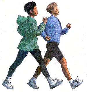 Регулярные занятия ходьбой вернут стройность фигуры